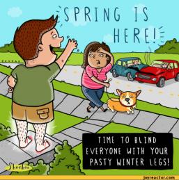 comics-shoeboxblog-spring-legs-612735